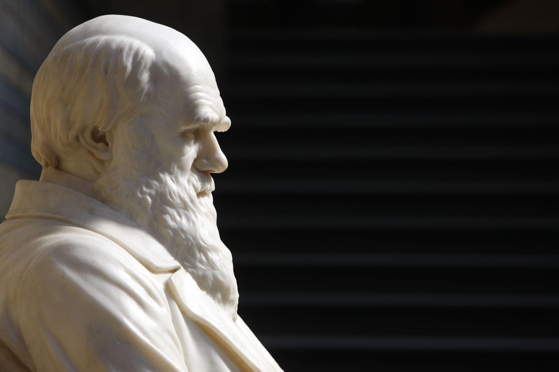 Estatua de Charles Darwin en el Museo Natural de Historia de Londres.