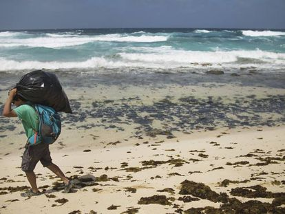 Un miembro de WWF recoge plástico en una de las playas vírgenes de la isla canaria de La Graciosa.