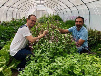 El cocinero Israel Ramos y Rafael Monge en el invernadero instalado dentro del navazo / Capel