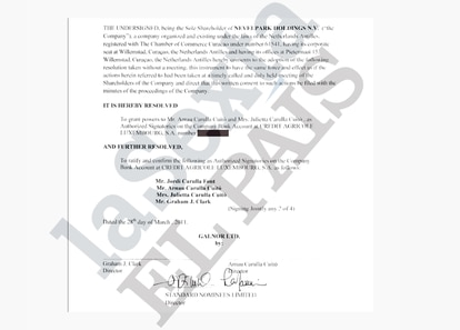 Autorización para la cuenta de Nevelpark Holdings.