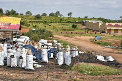 Mujeres en el mercado de leña. Según fuentes oficiales, más del 80% de las familias rurales de Uganda utilizan leña para cocinar. Los fuegos encendidos por los seres humanos para obtener, entre otros, energía para uso doméstico e industrial, así como las prácticas de tala y quema, provocan la emisión de cantidades enormes de dióxido de carbono. Pincha en la imagen para ver la fotogalería completa.