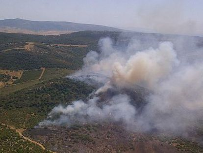 Incendio en el campo de adiestramiento del Retín, en Barbate (Cádiz).