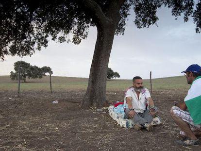 Sánchez Gordillo charla con jornalero tras pernoctar bajo una encina en la finca ocupada de Las Turquillas.
