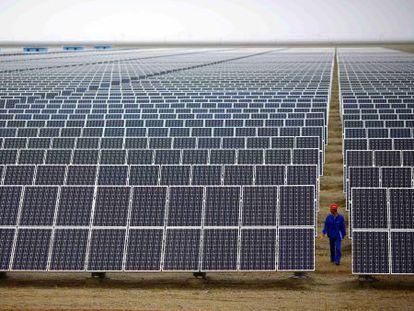 Un trabajador inspecciona paneles solares