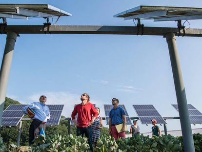 Una instalación de energía solar fotovoltaica.