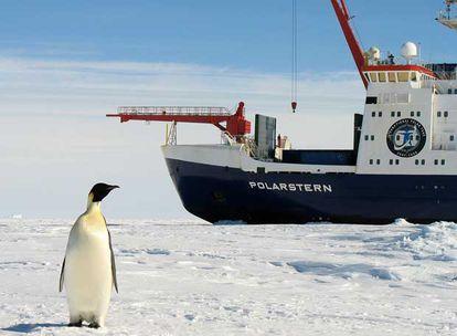 El rompehielos alemán <i>Polarstern</i> en la Antártida.