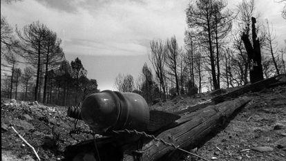 Un poste del tendido eléctrico, en la zona donde se produjo el incendio en 1994.