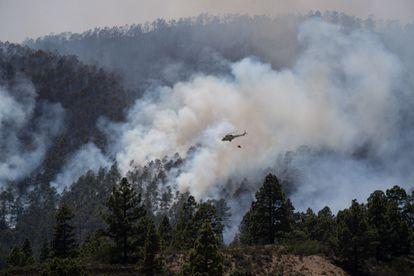 Helicóptero antiincendios en un bosque en llamas en Arico (Tenerife), el pasado mayo.