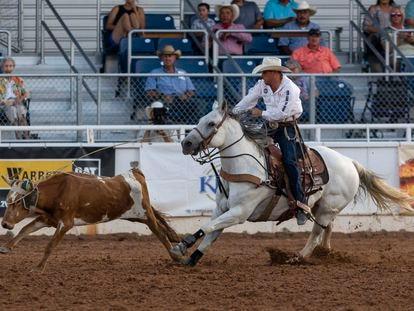 El vaquero Garret Hale, durante el West of Pecos Rodeo, el pasado 23 de junio.
