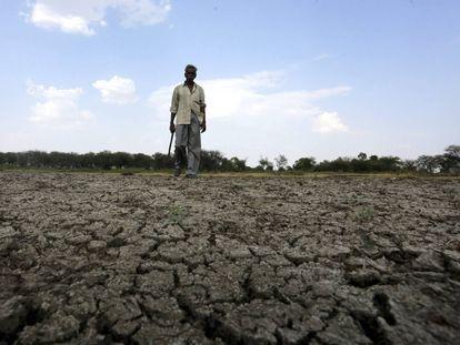 Un hombre camina en el lecho seco de un río en India.