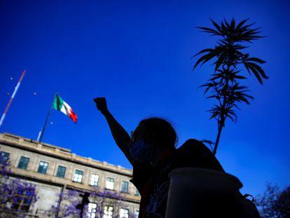 Un activista a favor de la legalización de la marihuana, en Ciudad de México.