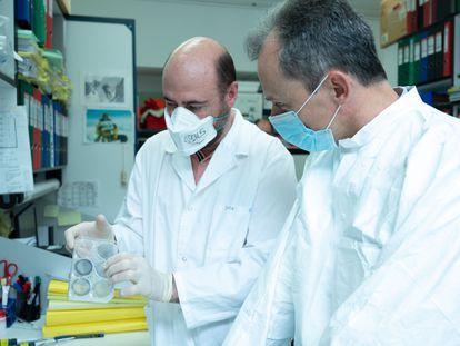 El investigador Mariano Esteban y el ministro Pedro Duque en el Centro Nacional de Biotecnología, en Madrid.