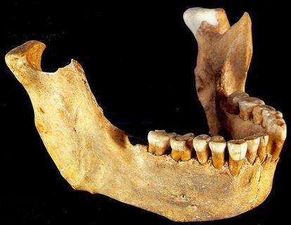Mandíbula neandertal de Zafarraya.