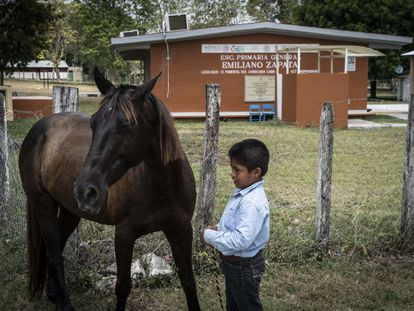 Un niño junto a un caballo, en una escuela primaria en una zona rural de Campeche, al sur de México.