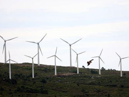 Molinos de viento en el parque eólico de Pradell de la Teixeta (Tarragona).