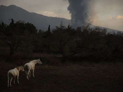 El volcán de Cumbre Vieja en La Palma, fotografiado el pasado 27 de septiembre.