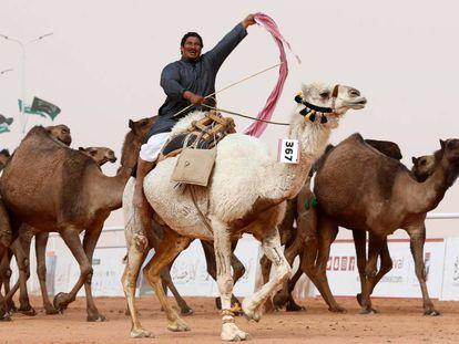 Un hombre montado en un camello saluda en el festival del rey Abdulaziz.