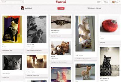 Pinterest, el sitio de moda.