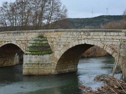 El río Carrión a su paso por Husillos (Palencia). En vídeo, la pareja que tiró a su bebé al río a la espera de la decisión del juez.