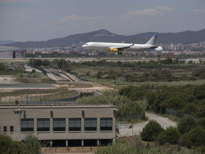 Un avión sobrevuela la zona natural de la Ricarda, junto al aeropuerto de El Prat de Barcelona.MASSIMILIANO MINOCRI / EL PAÍS