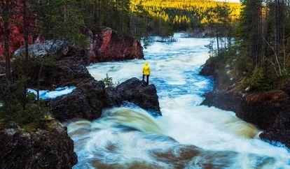 Parque Nacional de Oulanka.