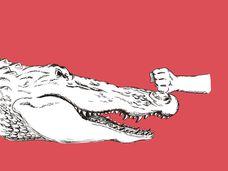 ¿Le ataca un cocodrilo cuando baja a por el pan? Tranquilo, tenemos la solución a este problema al que nos enfrenamos casi a diario.