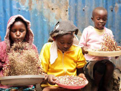 Tres niñas del orfanato Good Samaritan separan el grano del trigo.