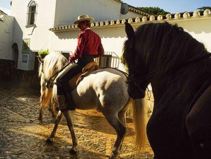 Antonio Domecq Domecq, ex rejoneador, montando a caballo en su finca.