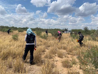 Efectivos de la Policía e integrantes de la Comisión Nacional de Búsqueda trabajan en un predio en Tamaulipas.