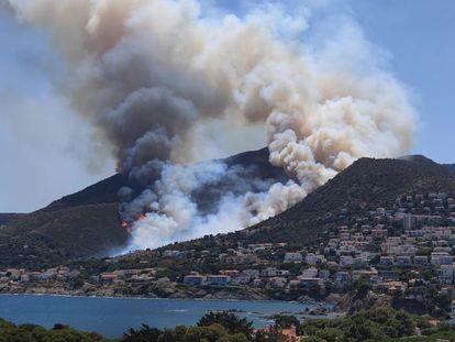 Imagen del incendio forestal de Llançà (Girona).