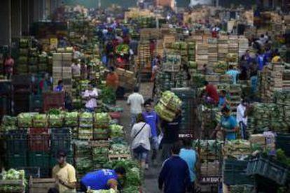 Vista general de un pabellón en el mercado de abastos Ceasa en Río de Janeiro (Brasil). EFE/Archivo