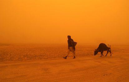 Un hombre con su vaca en medio de una tormenta de arena en la provincia afgana de Ghazi en 2005.