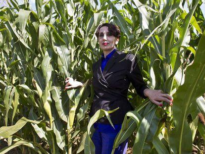 La cantante Luz Casal posa para los fotógrafos en un maizal próximo a su casa natal, en Orros (Boirmorto, A Coruña).