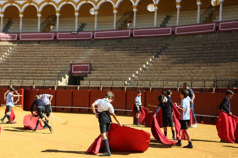 Escolares juegan al toro en La Maestranza en una jornada de puertas abiertas.