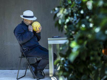 20/04/2021 - Vicente Todolí, exdirector de la Tate Modern y apasionado de los cítricos, en su finca de Palmera, Valencia ©Raúl Belinchón