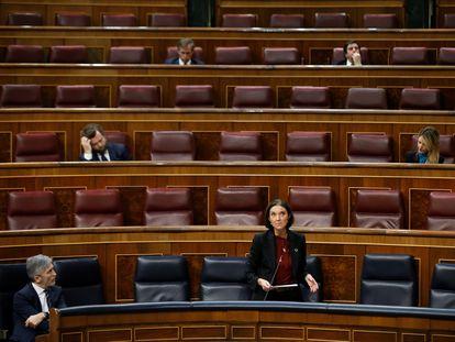 La ministra de Industria, Comercio y Turismo, Reyes Maroto durante un pleno de control al Ejecutivo celebrada durante el periodo de confinamiento.