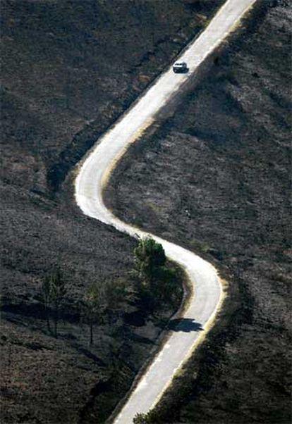 Tierra quemada a ambos lados de una carretera en Avión, Ourense.
