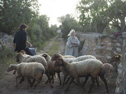 Los artistas Jaume Roig y Adriana Meunié con sus ovejas en Mallorca.