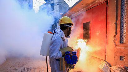 Un trabajador fumiga una calle en Peshawar, Pakistán, para detener un brote de dengue.