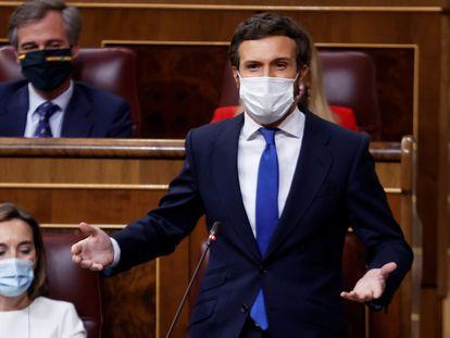 blo Casado interviene durante la sesión de control al Gobierno de este miércoles.