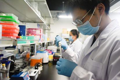 Investigadores de la Universidad de Pekín realizan un ensayo con la vacuna contra la covid.