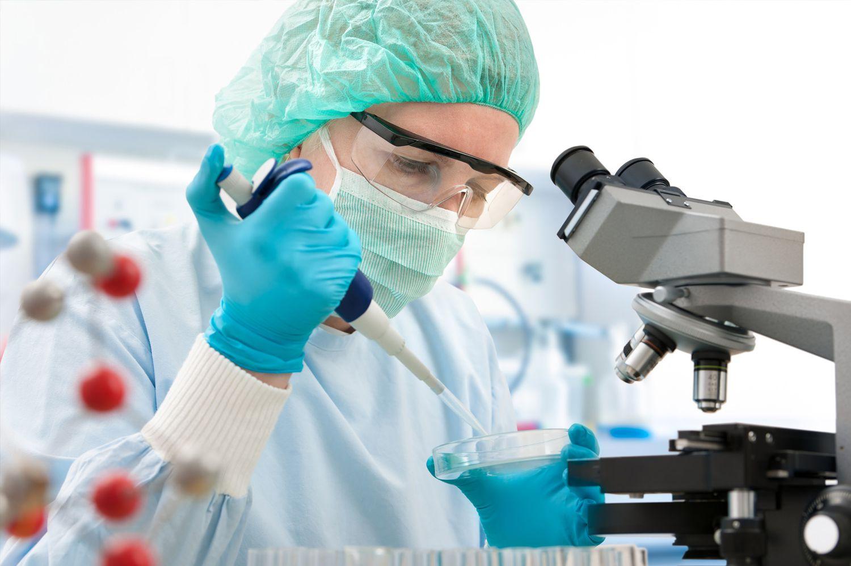 Laboratorio chileno donde se elabora la sustancia a partir del quillay.