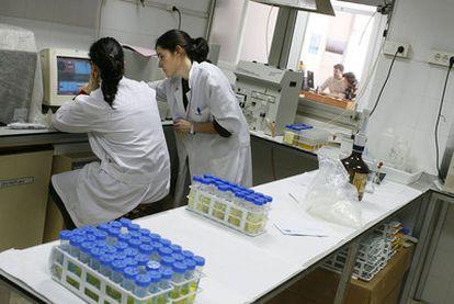 Las nuevas escuelas doctorales contarán con la colaboración de hospitales o empresas.