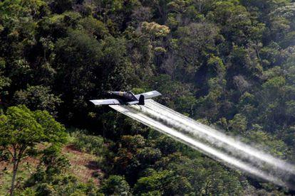 Fumigación con glifosato en Colombia, en una imagen de archivo.