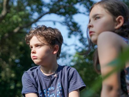 La American Psycological Association (APA) distingue entre cuatro formas de crianza como las más comunes, que son: los padres autoritarios, padres con autoridad, padres permisivos y padres pasivos.