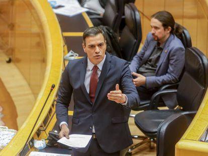 Pedro Sánchez, durante la sesión de control al Gobierno en el Senado el pasado martes.
