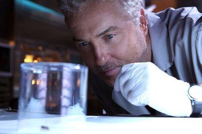 Gil Grissom (interpretado por William Petersen) en un capítulo de 'CSI: Las Vegas).