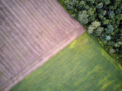 Vista aérea de las plantaciones de soja en el linde del área reconocido como Floresta Nacional en el bajo Tapajós, donde vive Dani.