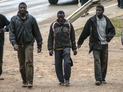 Un grupo de inmigrantes se dirigen al CETI tras saltar la valla de Melilla, el pasado lunes.