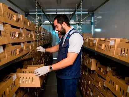 Para evitar el trasiego inútil de la mercancía en las fronteras de la región centroamericana, el BID sugirió implementar la trazabilidad de la carga y medidas higiénicas adicionales.